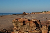 Rock formations at Broome port, low tide